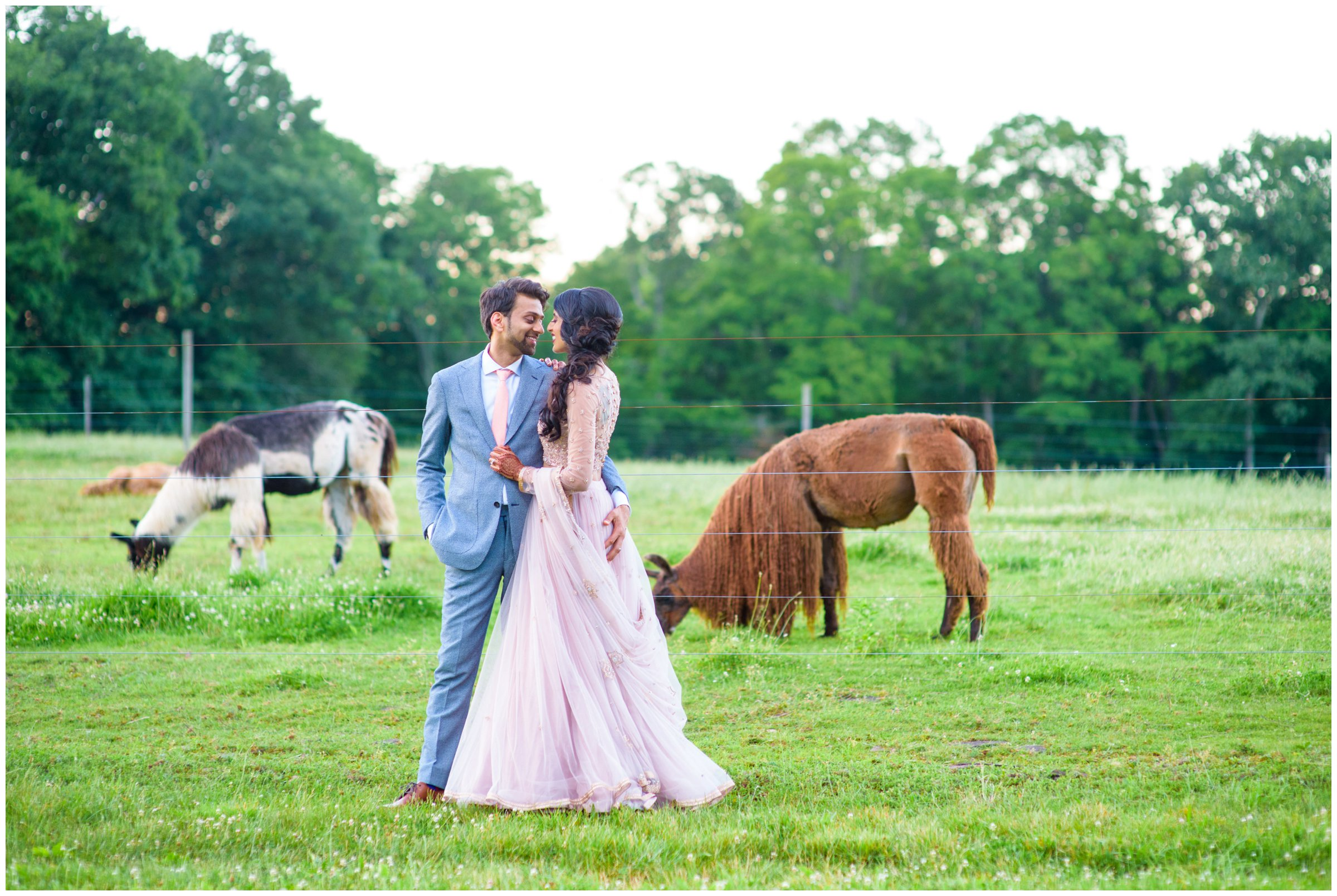 WoodsEdge Farm Stockton NJ Wedding Ajit Singh Photography